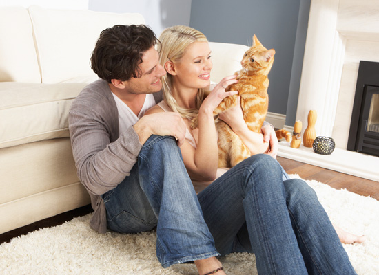 pros-and-cons-of-having-pets-in-college